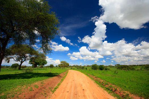 Beautiful landscape of Tarangire national park, Tanzania