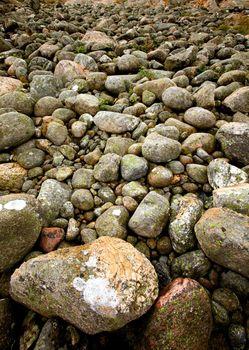 A rock background texture