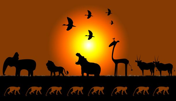 Picture of animals of Africa on sunset