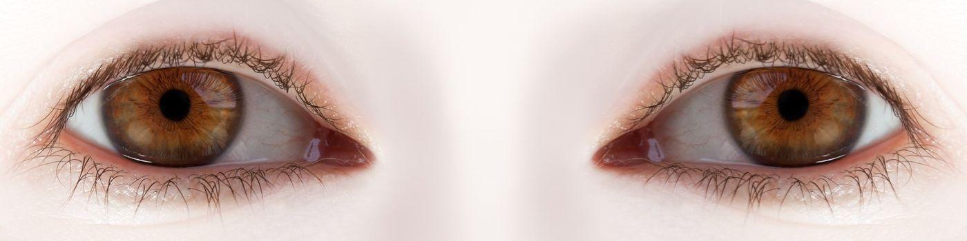 Human body part - beauty looking women eyes macro