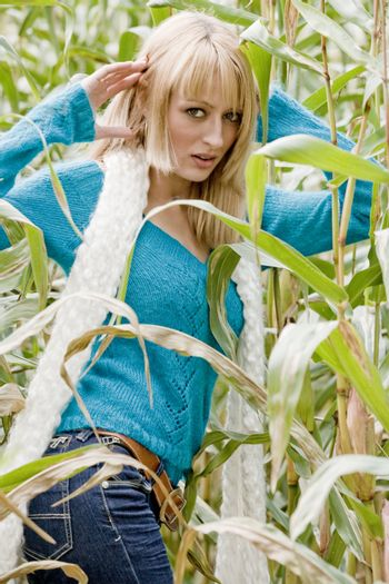 Young beauty blond woman in a cornfield
