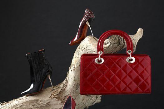 shoes and handbag composition