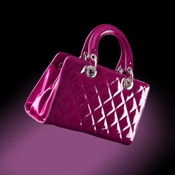 woman handbag , fashion photo
