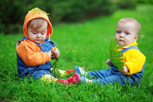 Cute twins babies sitting on fresh green grass in park