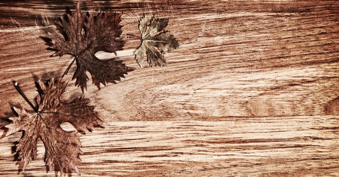 Autumn leaves border over natural wood background, old dry leaf shape, nature at fall