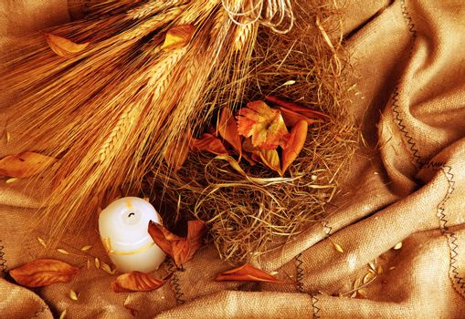 Autumn wheat background with leaves & candle
