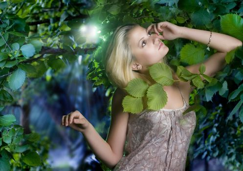 Beautiful Romantic Woman At Misty Forest