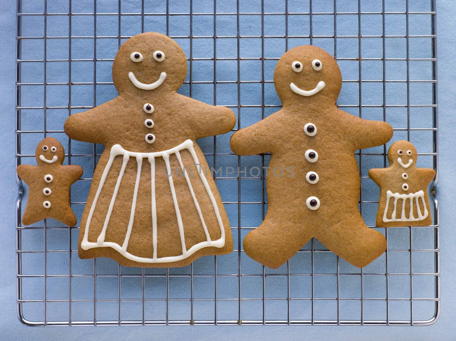 Gingerbread Family by MonkeyBusiness