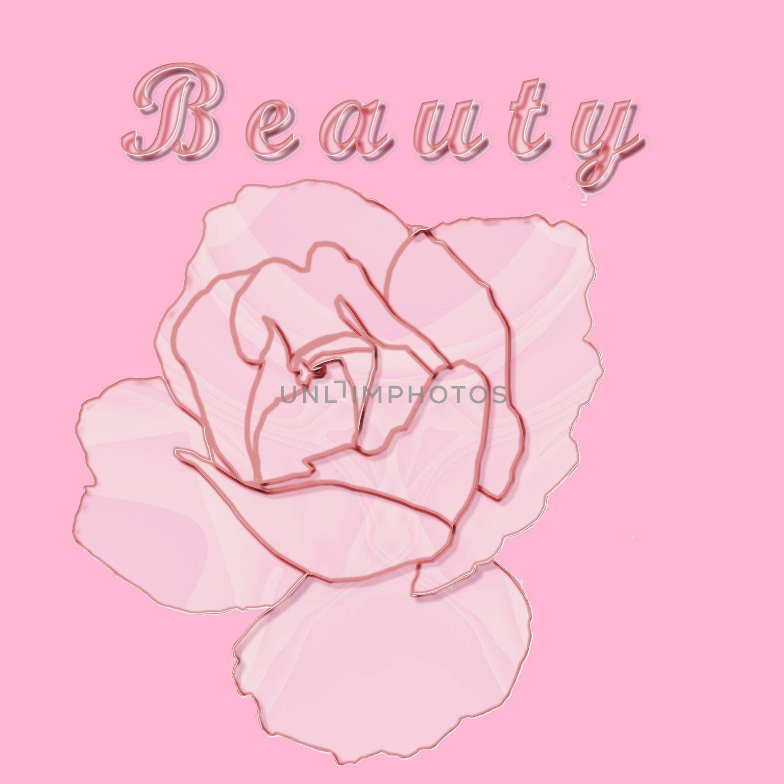 The concept of beauty illustrated by a glass rose on pink - a raster illustration.