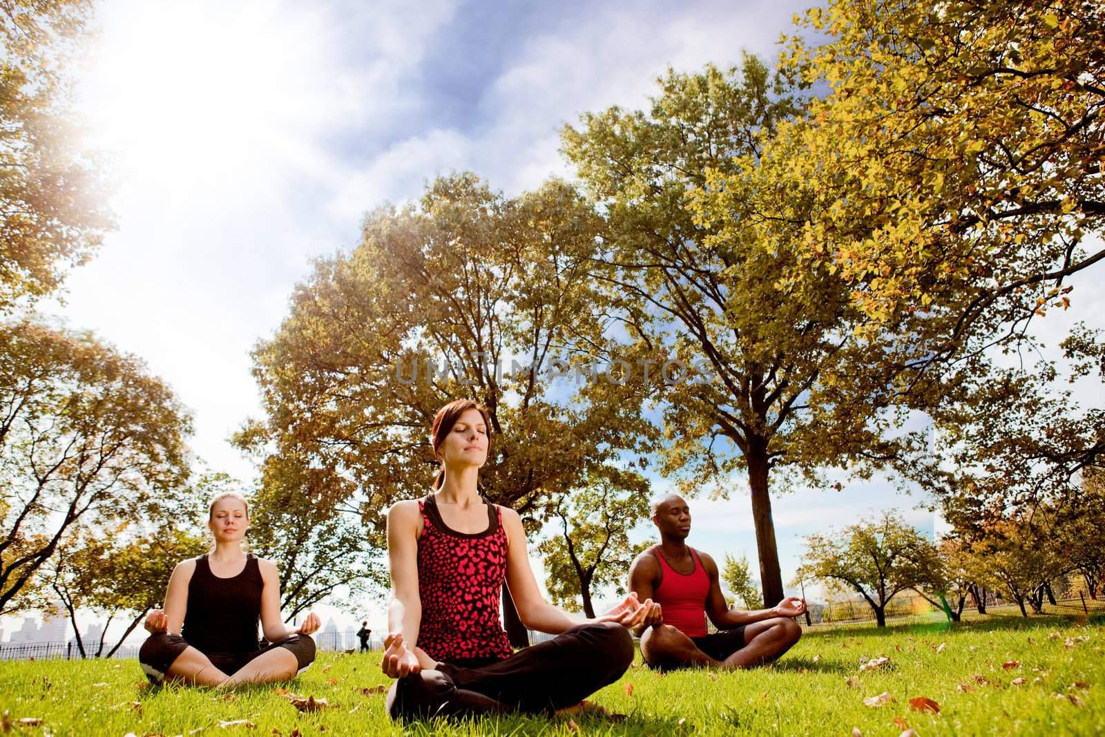 A group of people doing yoga in a city park