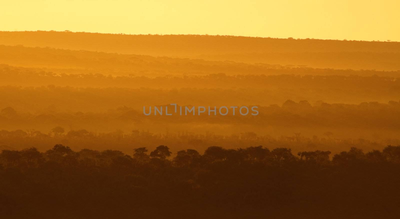 African sunrise. Beautiful sunrise over Tarangire national park, Tanzania