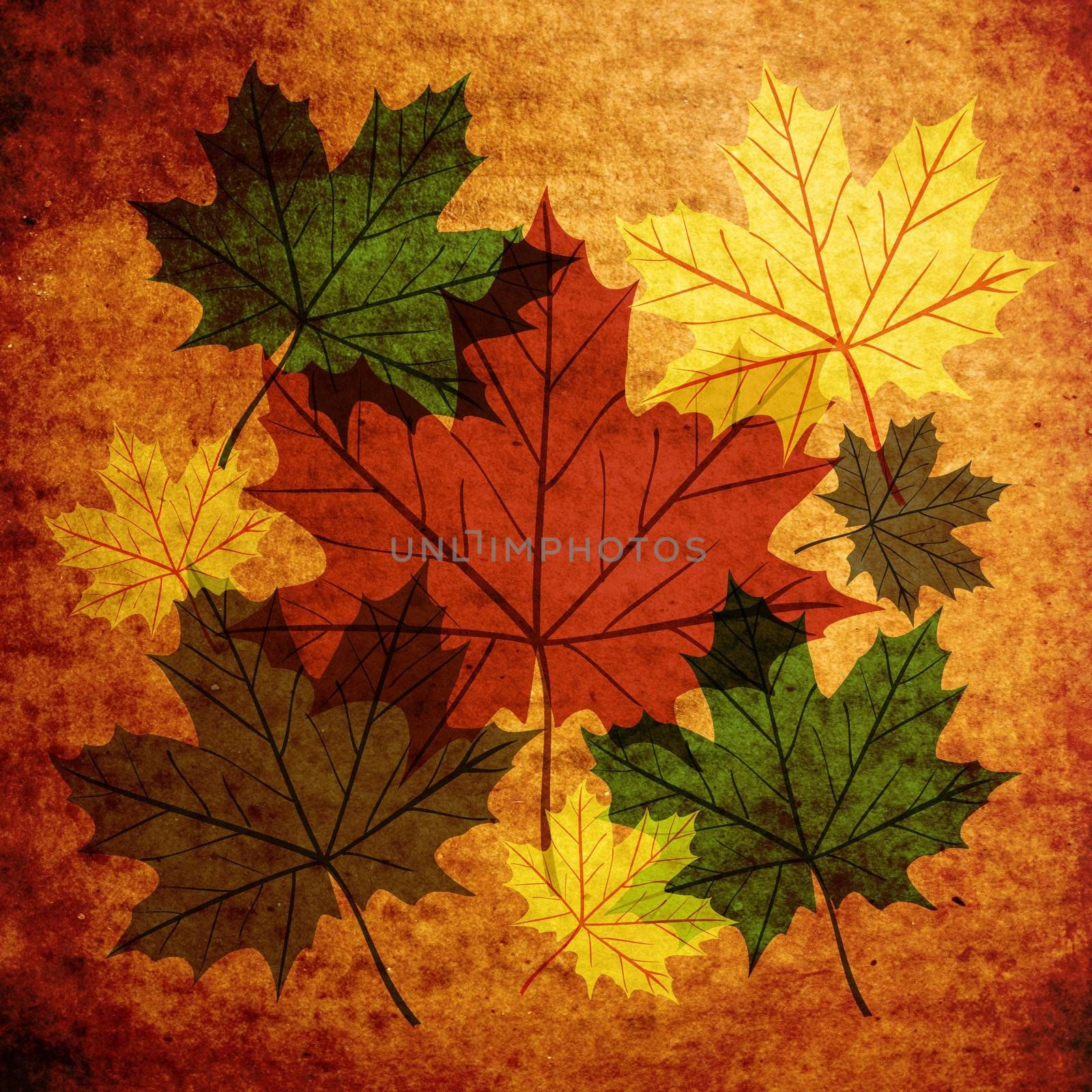 Fall leaves vintage abstract composition background