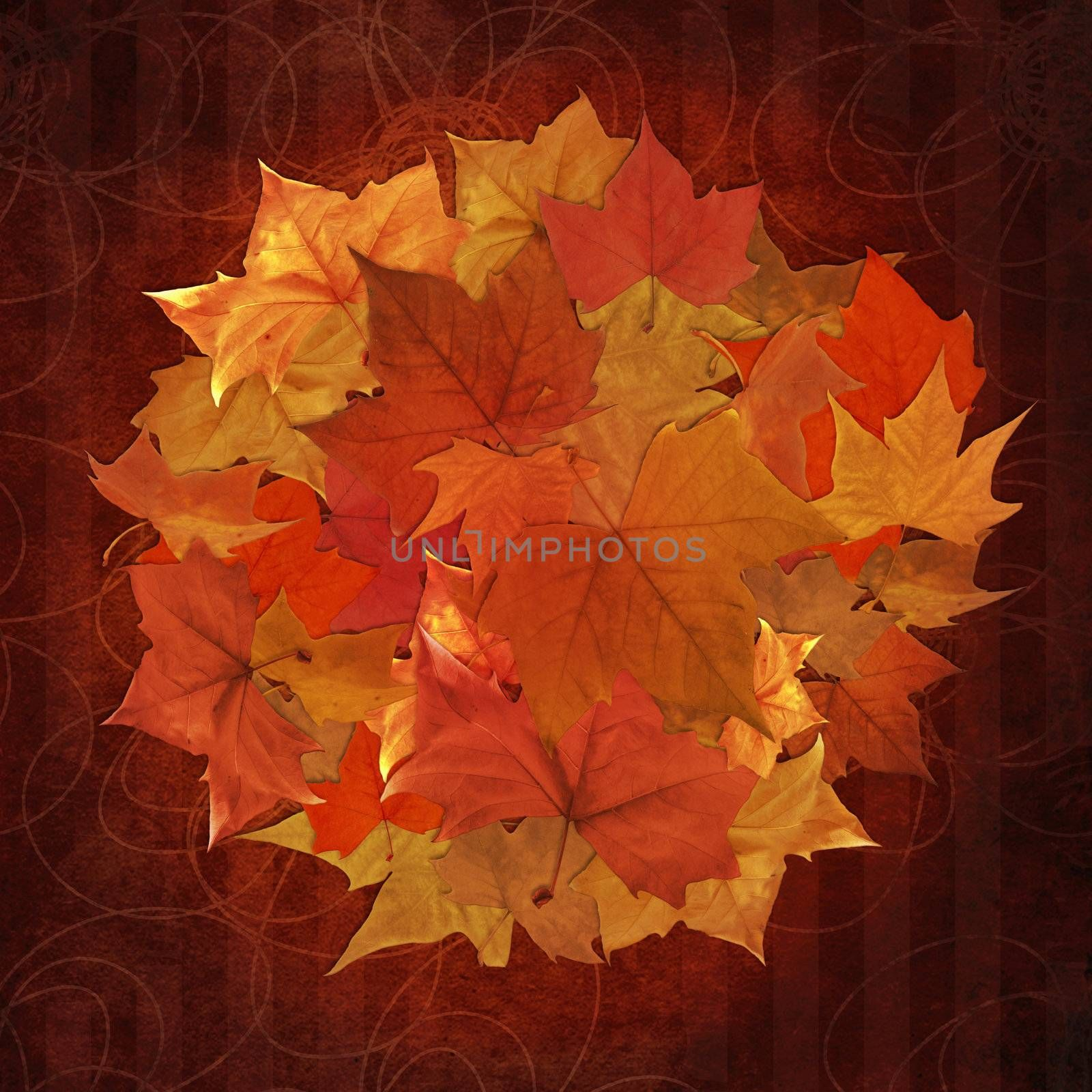 Autumn leaf in circle shape collage over vintage pattern background