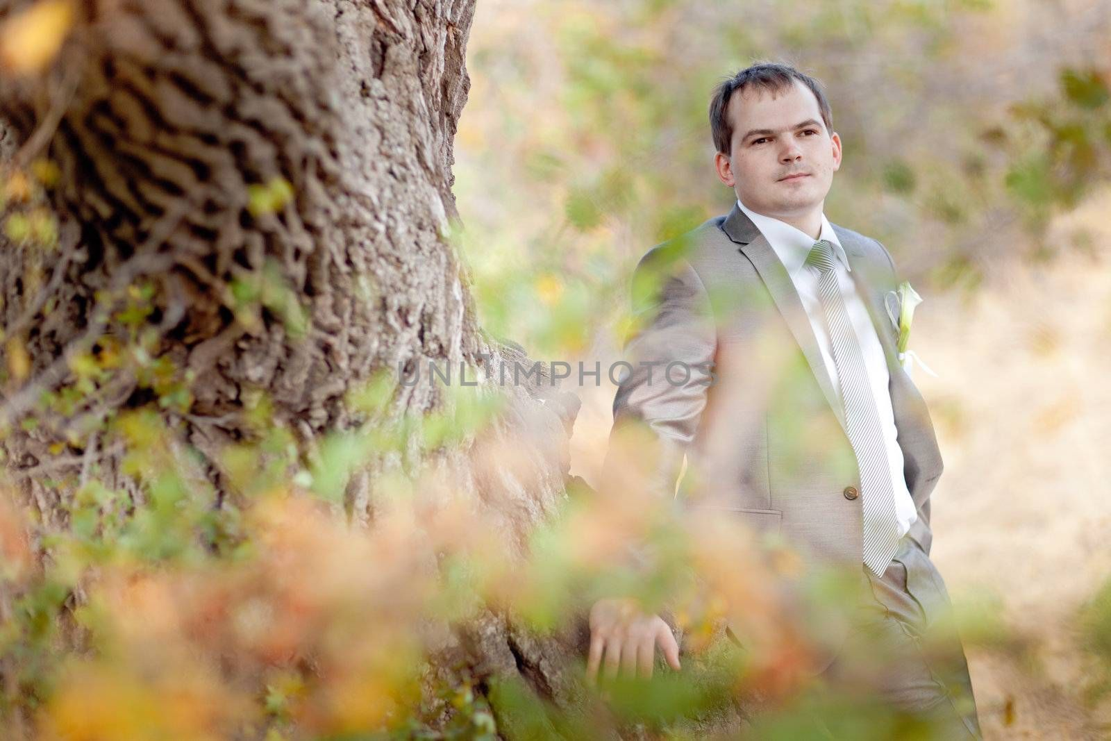 well-dressed young man near the tree