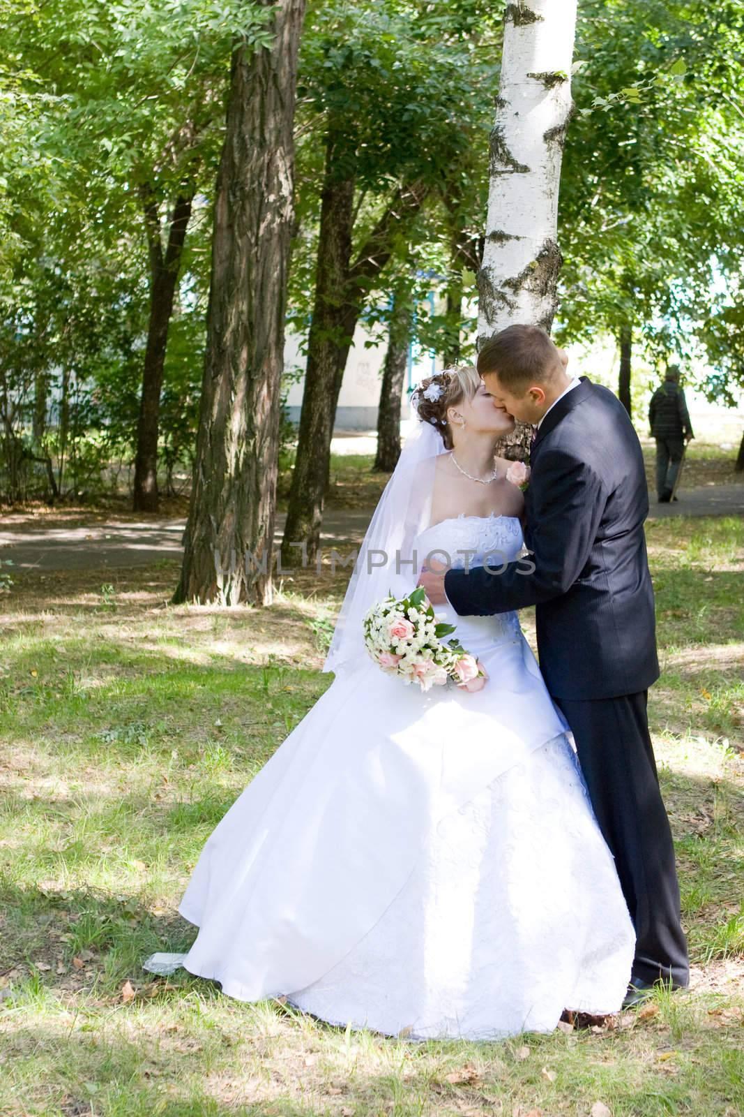 bride and groom kiss near the birch