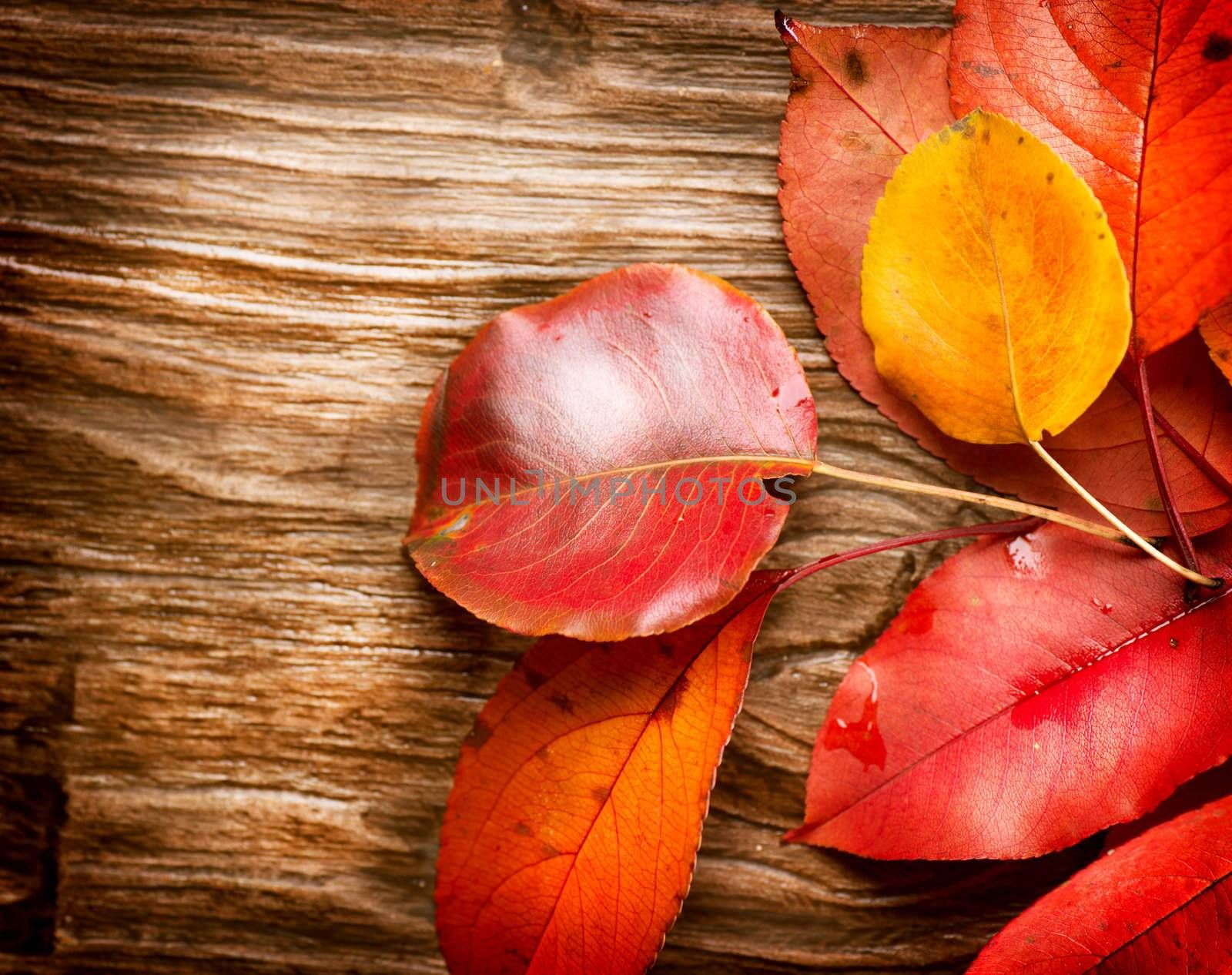 Autumn Leaves over wooden background. Fall