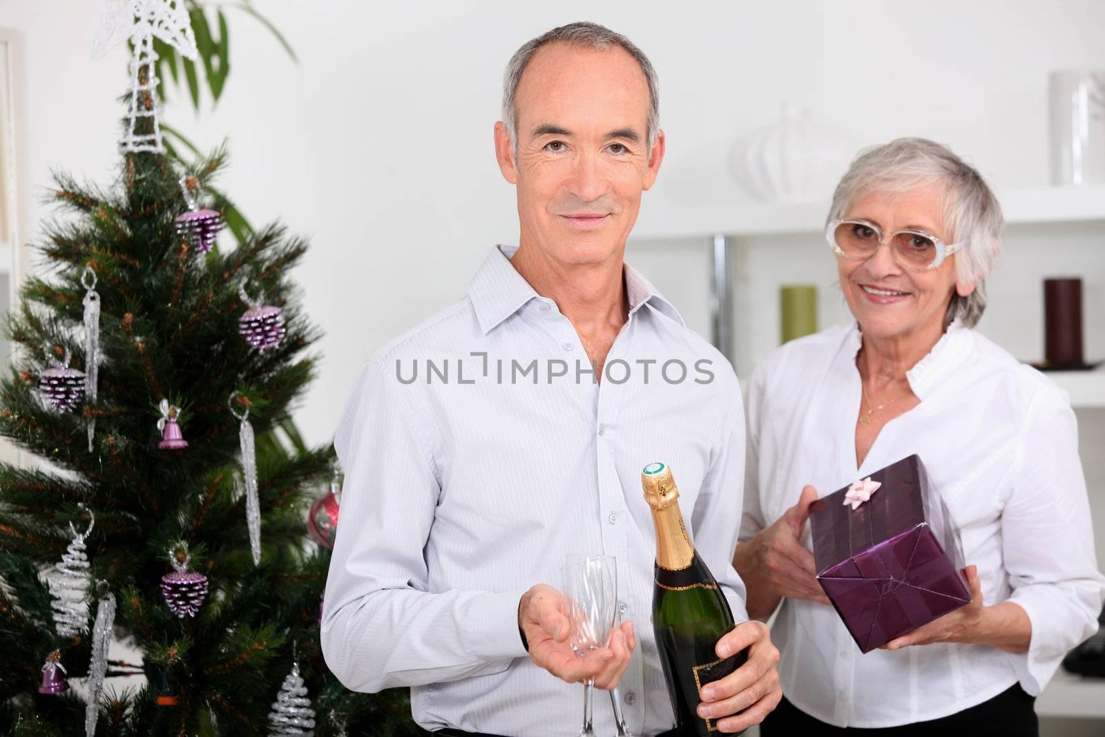 Elderly couple celebrating together at Christmas