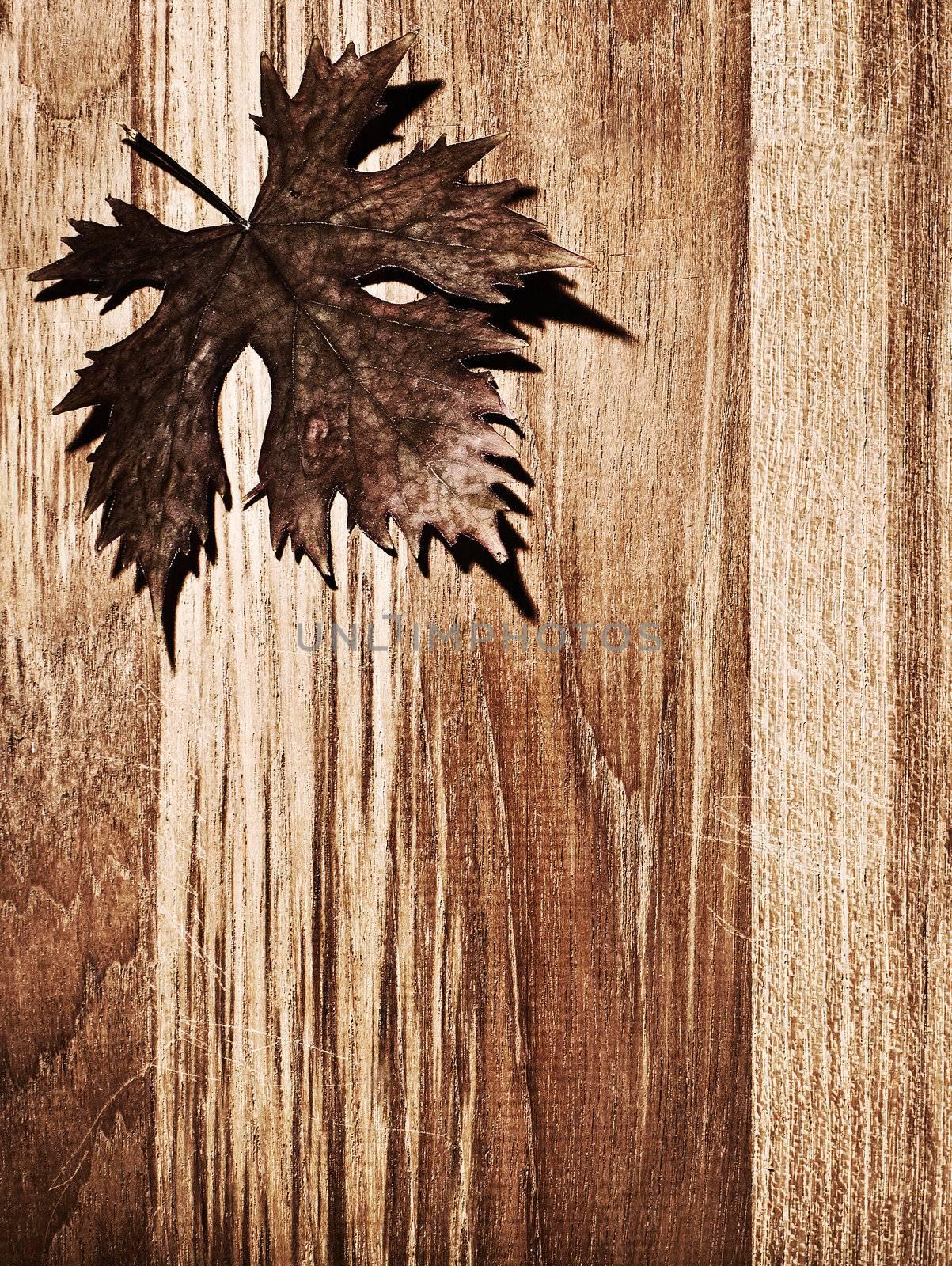 Autumn leaf  border over natural wood background, old dry leaf shape, nature at fall