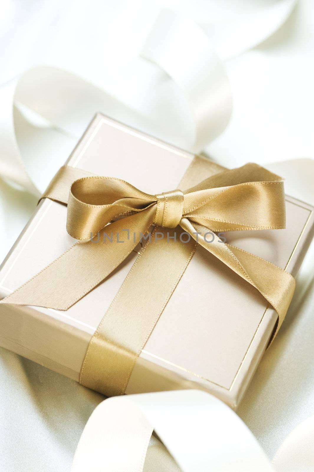 Romantic Gift by SubbotinaA