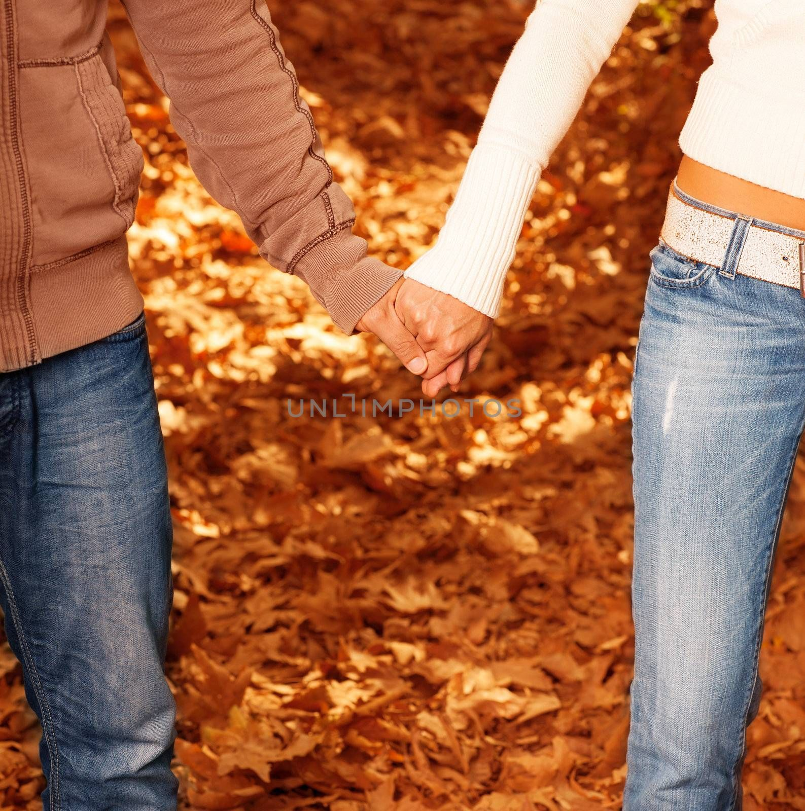 Image of male with female holding hands, body parts of loving couple on autumn leaves background, romantic relationship, honeymoon holiday, happy family, boyfriend and girlfriend, love concept