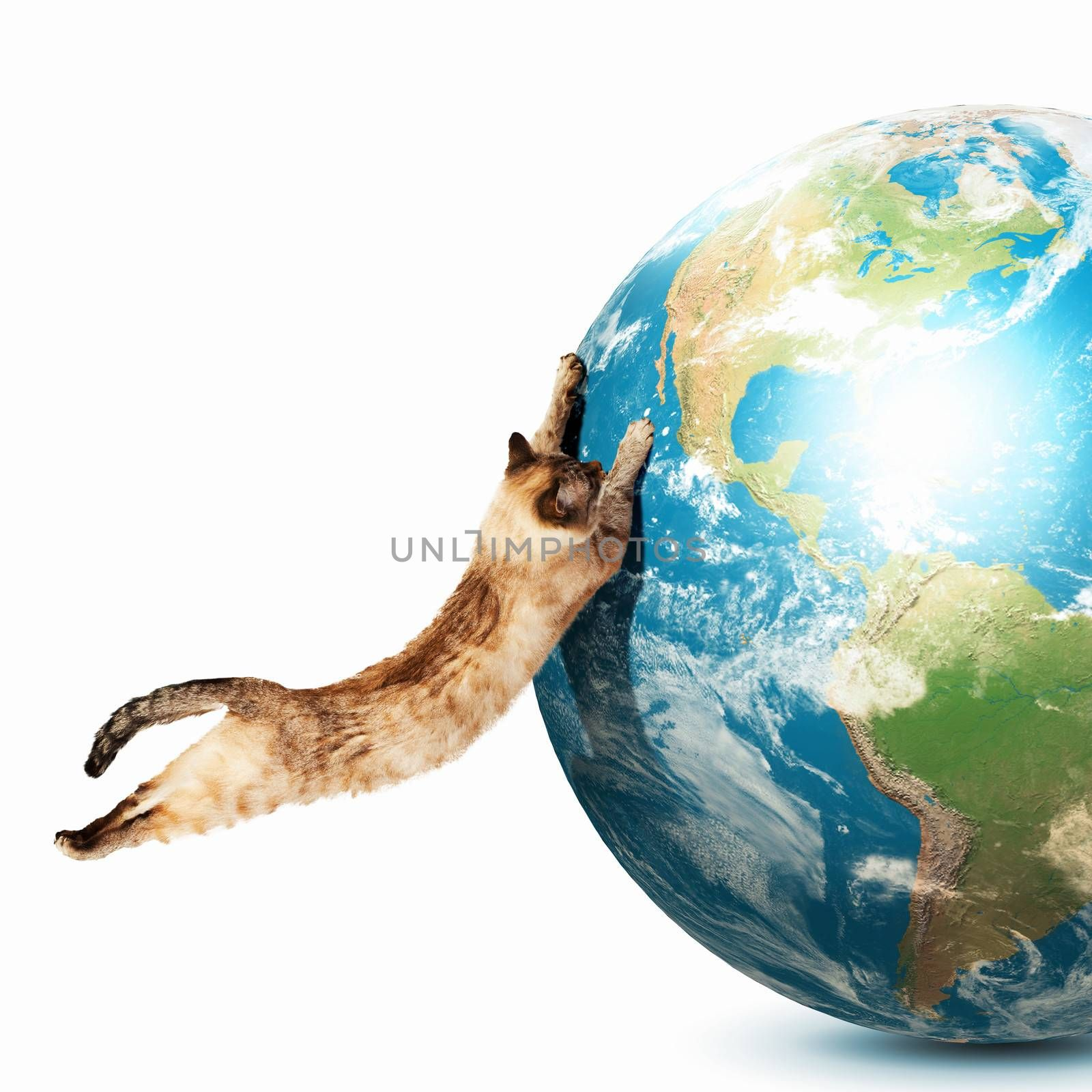Siamese cat playing with globe. Elements of this image are furnished by NASA