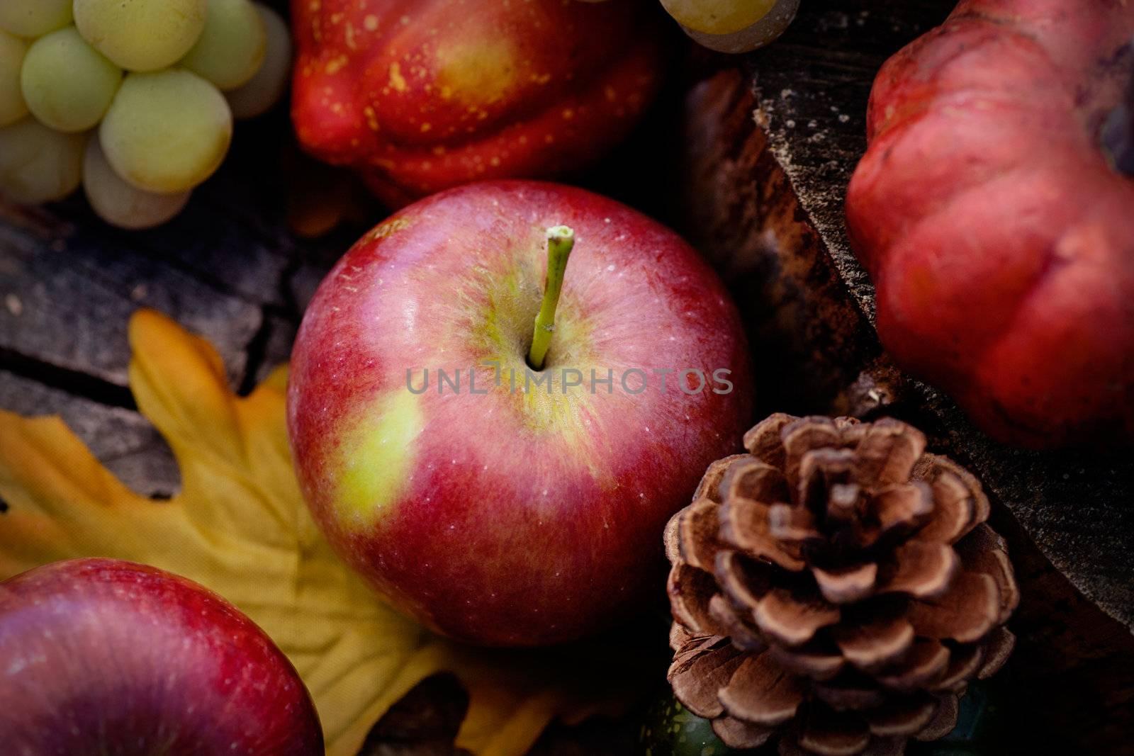 Autumn fruit by mythja