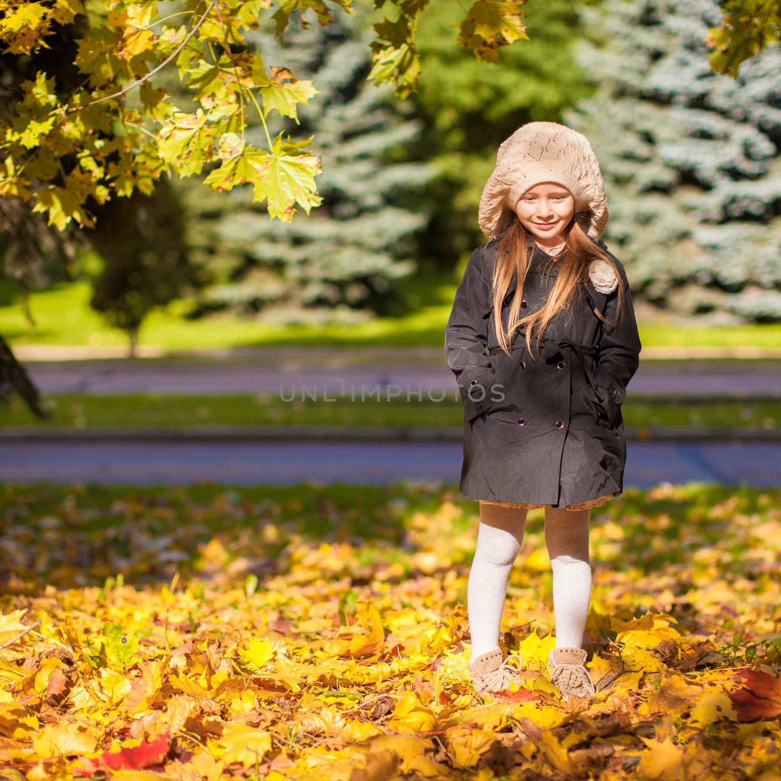 Little beautiful girl on the autumn meadow on a sunny fall day