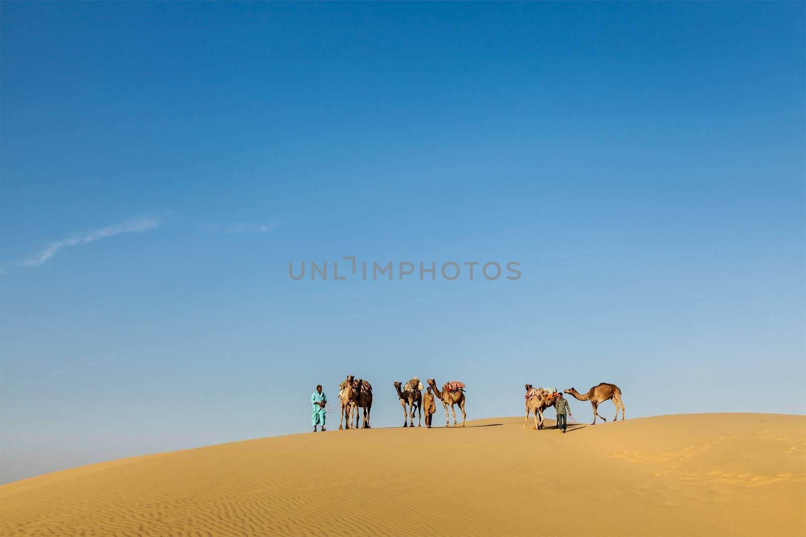 Rajasthan travel background - Three cameleers (camel drivers) with camels in dunes of Thar desert. Jaisalmer, Rajasthan, India