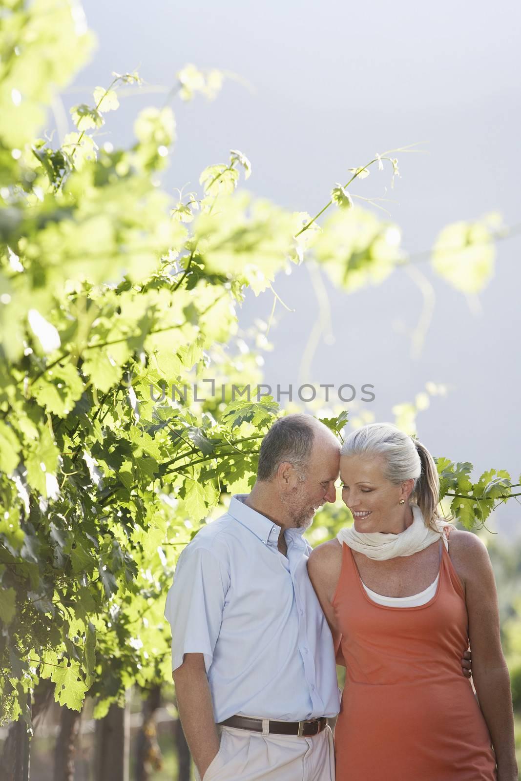 Romantic Couple In Vineyard