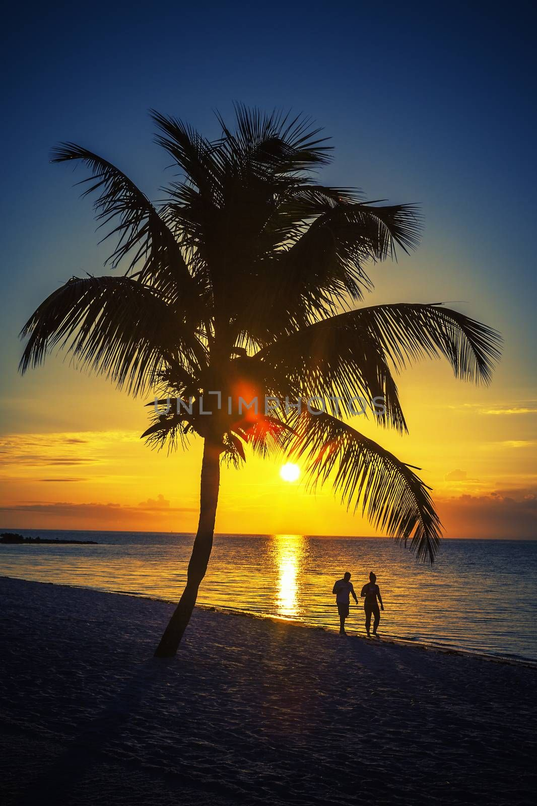 View of palm tree and lovers on a beach at sunset, Key West, USA