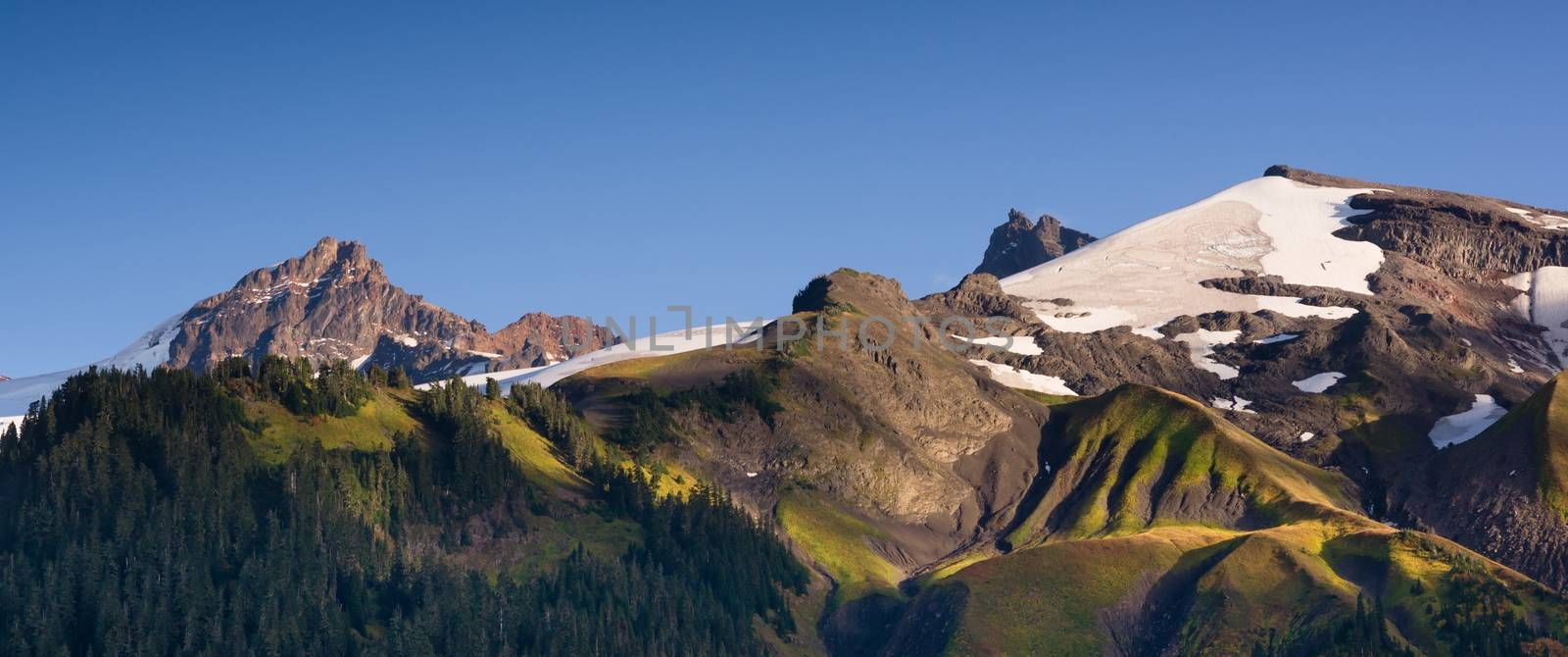 Heliotrope Ridge and natural beauty found around the Cascade Range
