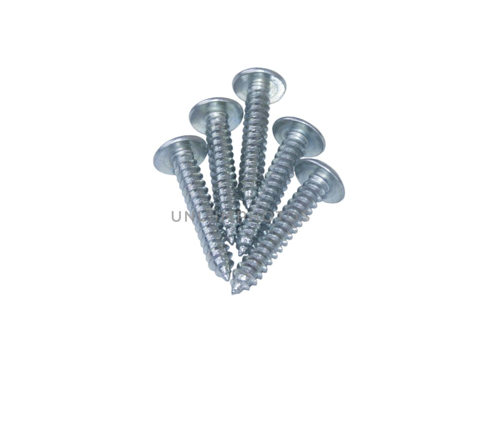screws. For your commercial and editorial use