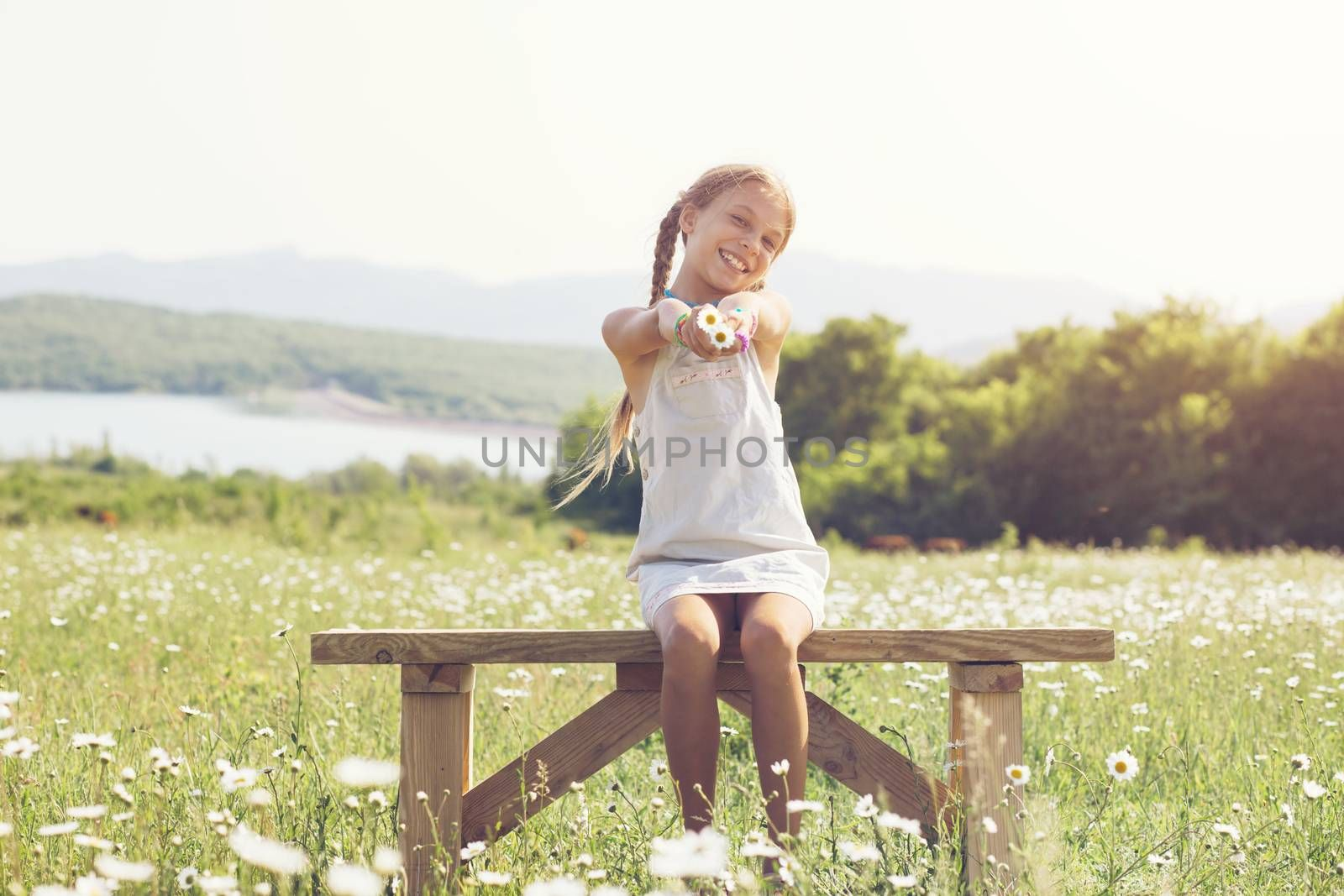 8 years old preteen girl sitting on rustic bench in flower field
