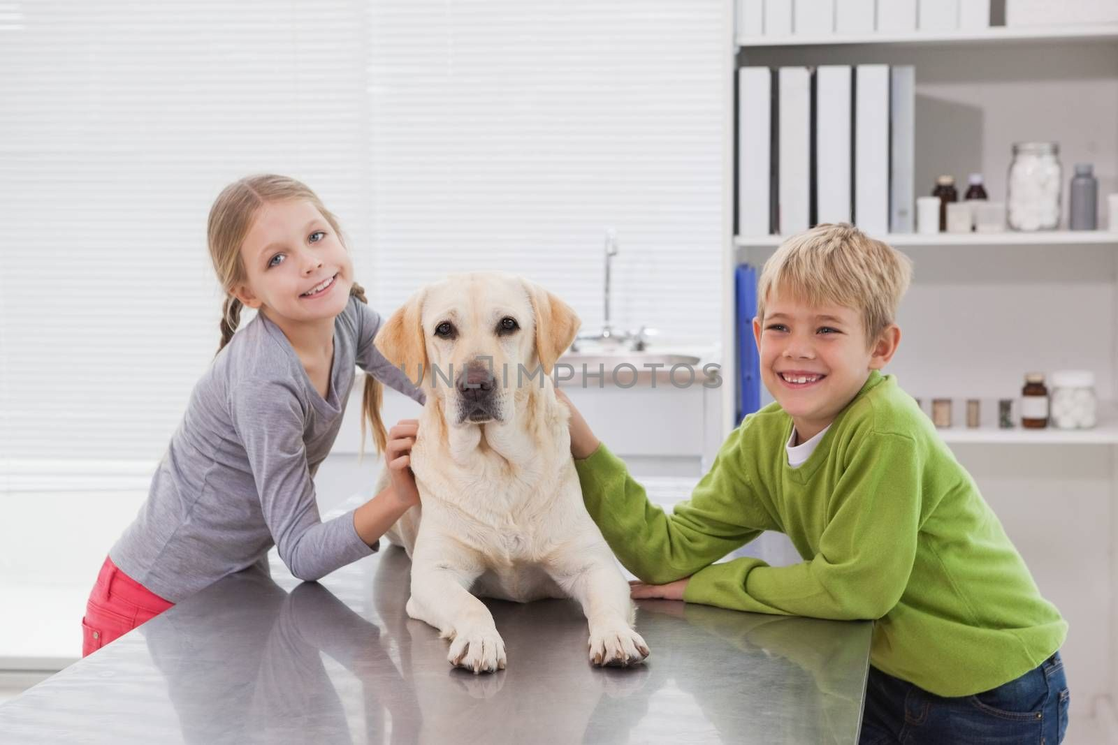Cute labrador with its happy owners in medical office