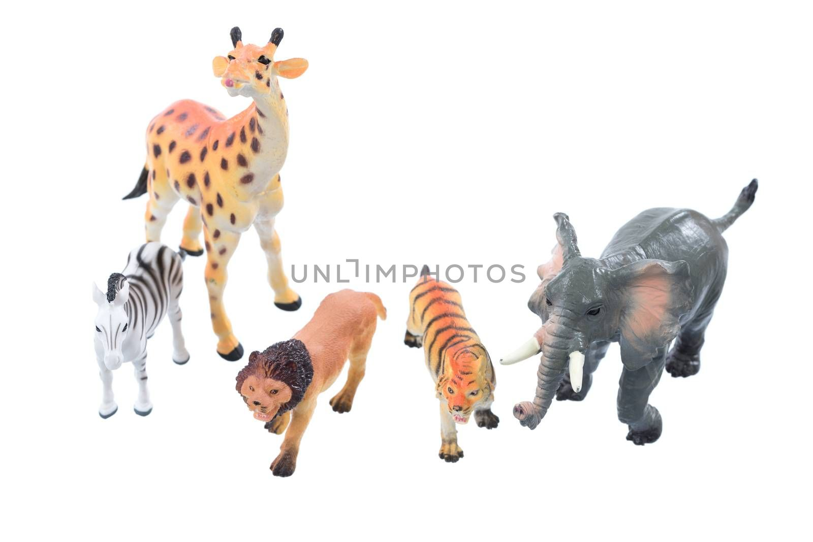 Small toy animals ioslated on a white background.