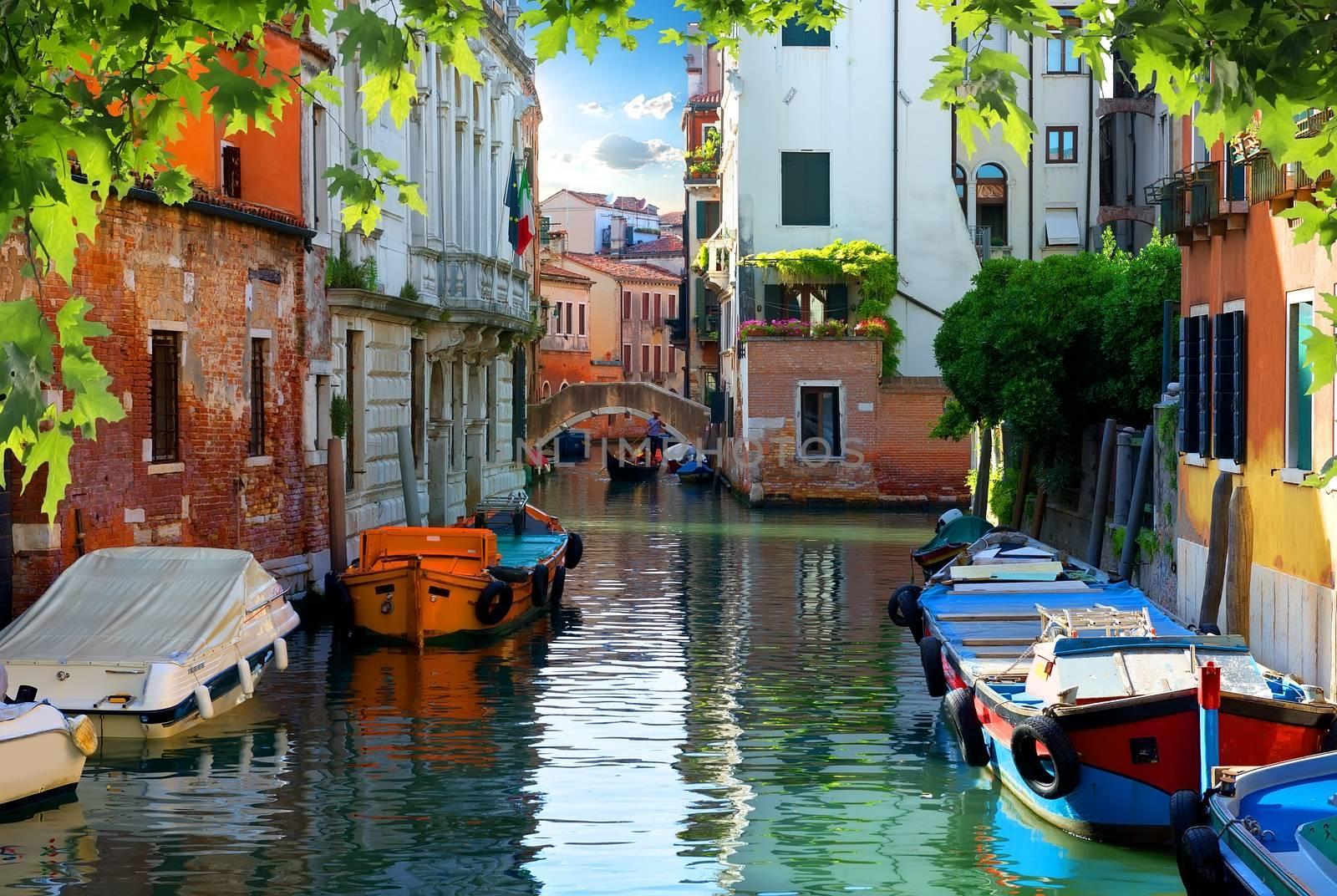 Sunny day in the street of Venice, Italy