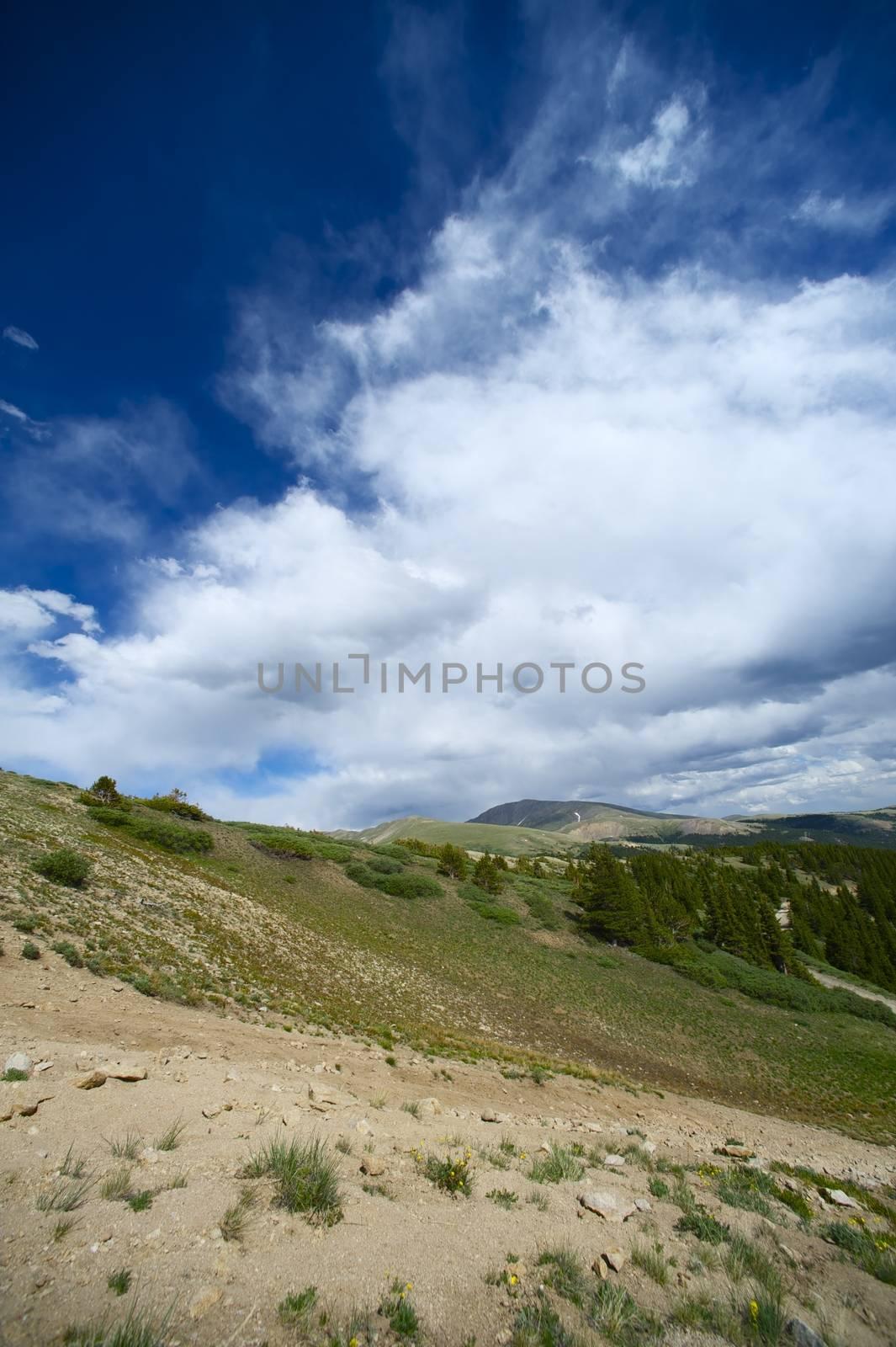 Summer Rockies. Rocky Mountains neat Alma City, Colorado USA. Portrait Alignment.