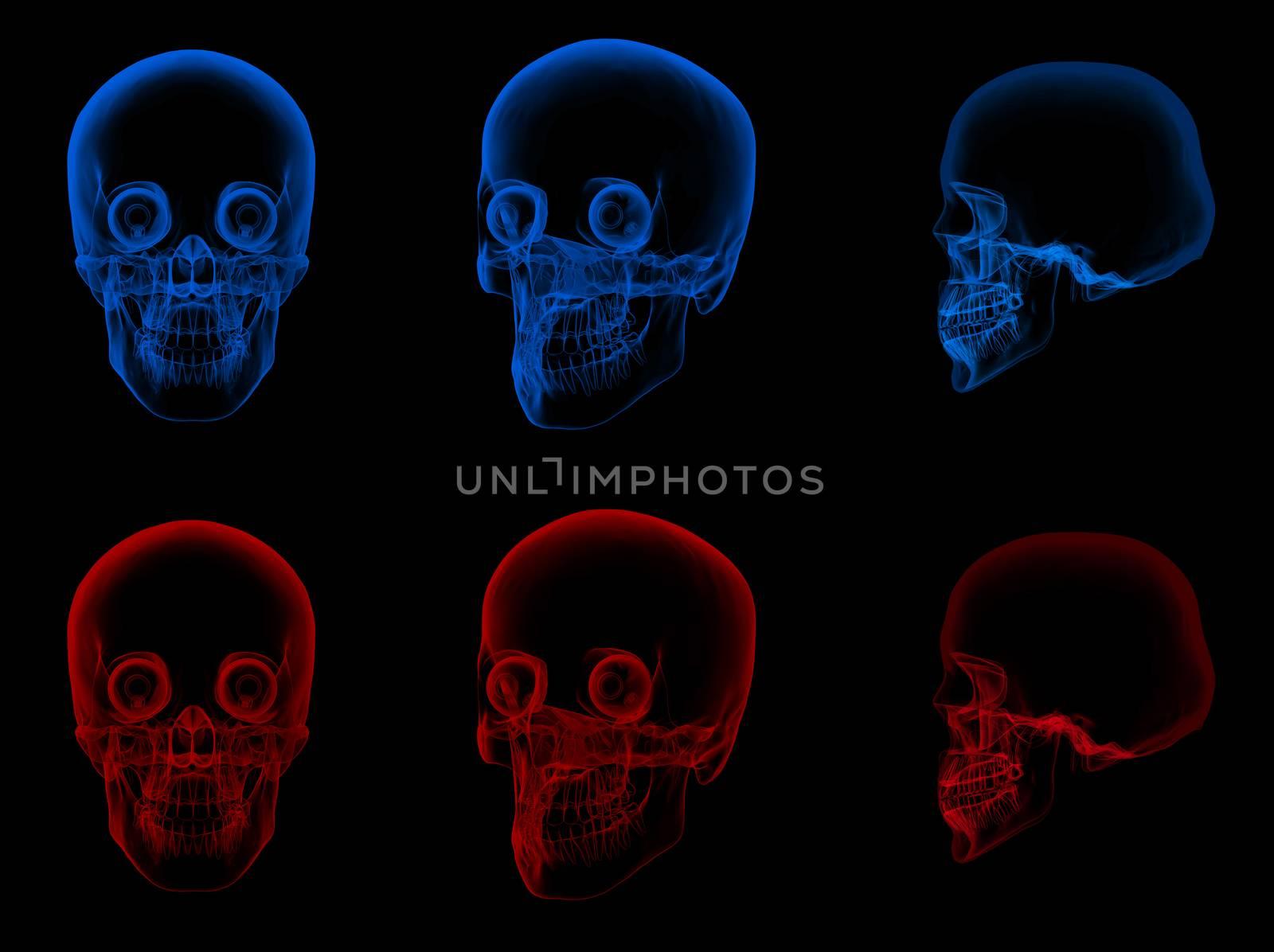 3d render illustration of the skull and eye