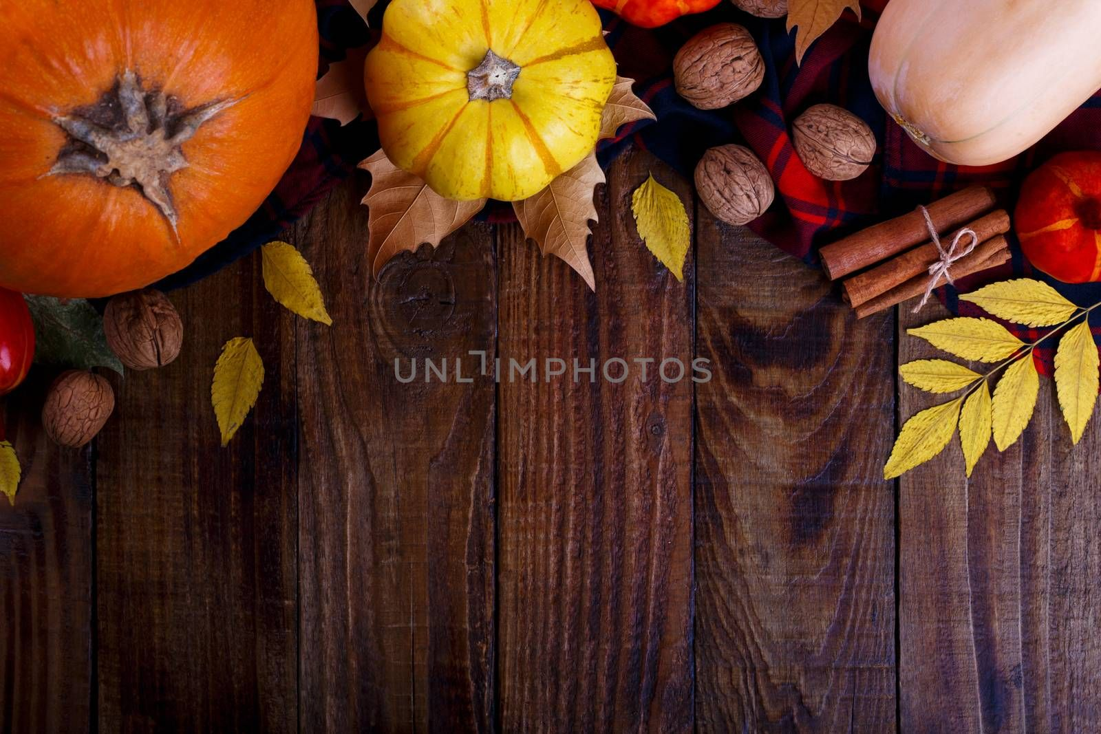 Autumn halloween or thanksgiving backgrouund Yellow and red leaves and colorful pumpkins copy space