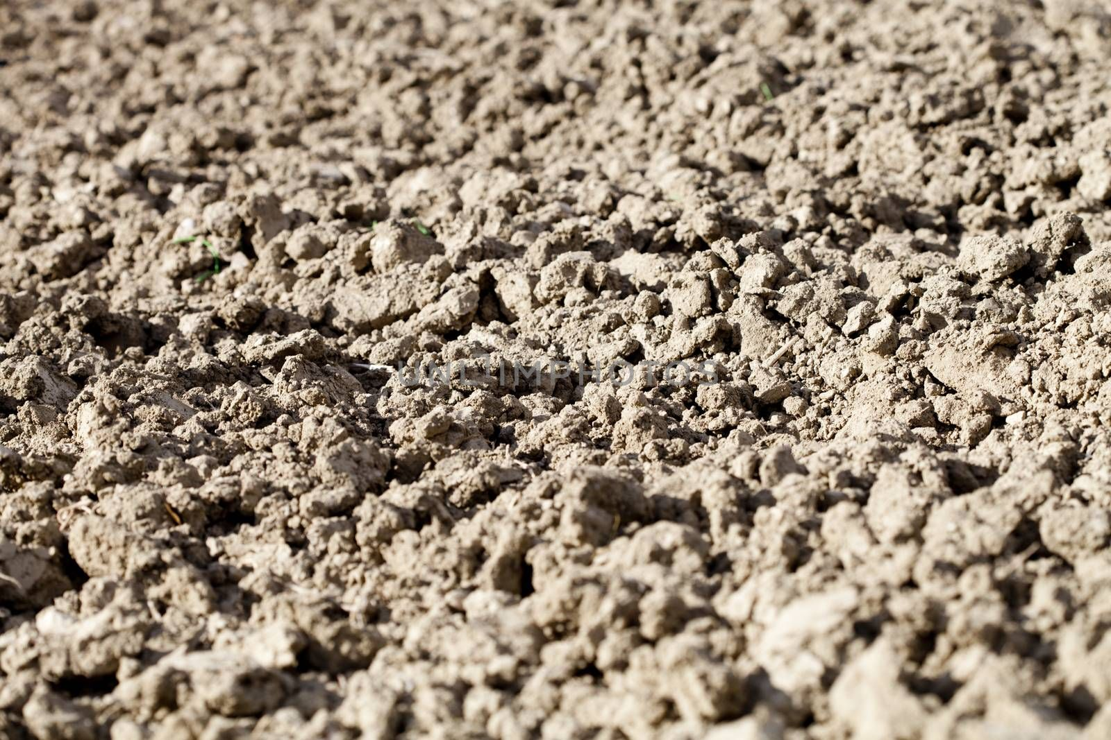 Soil texture background ready for cultivation.
