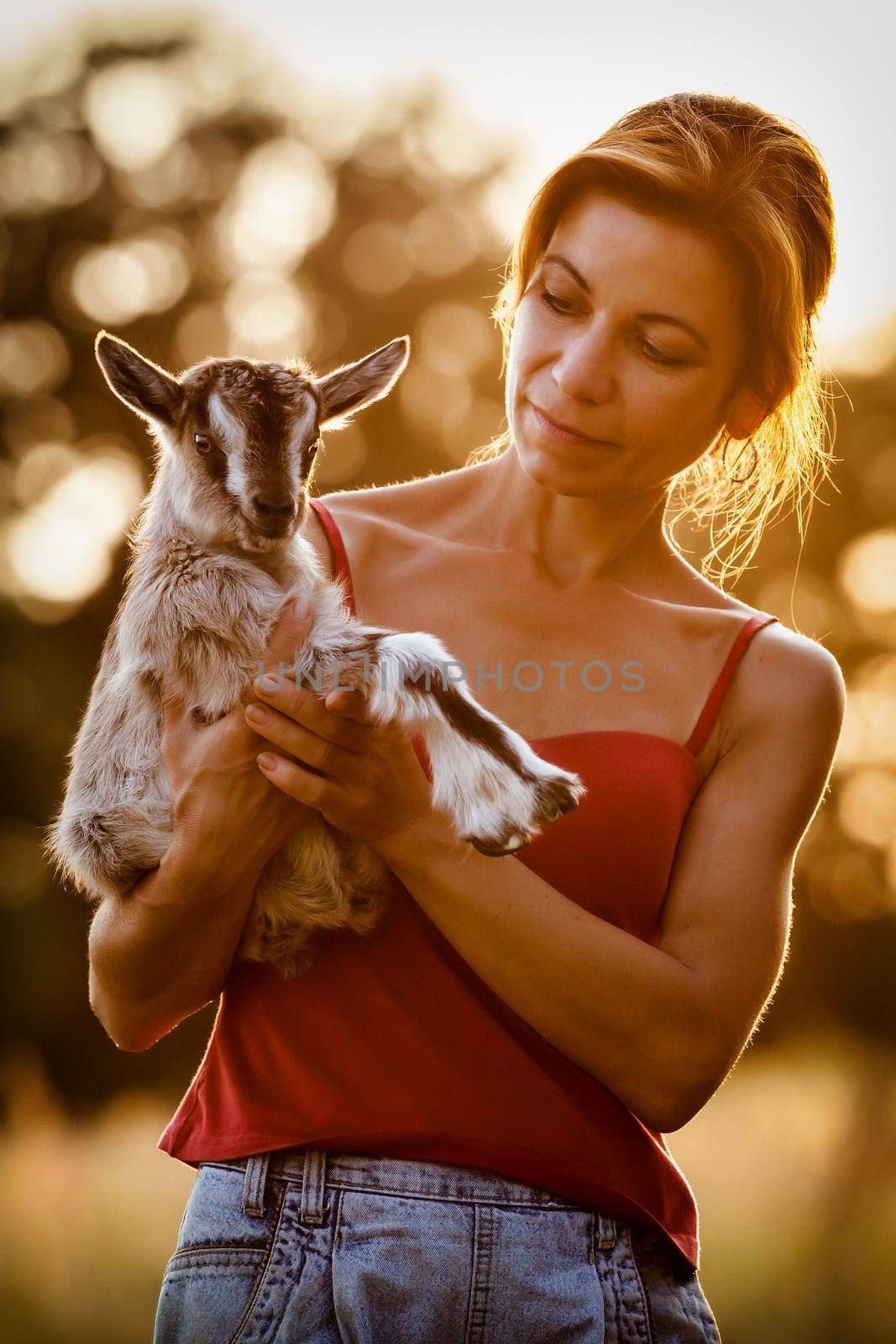 Beautiful woman with a small and nice goatling on her hands in a sunset background