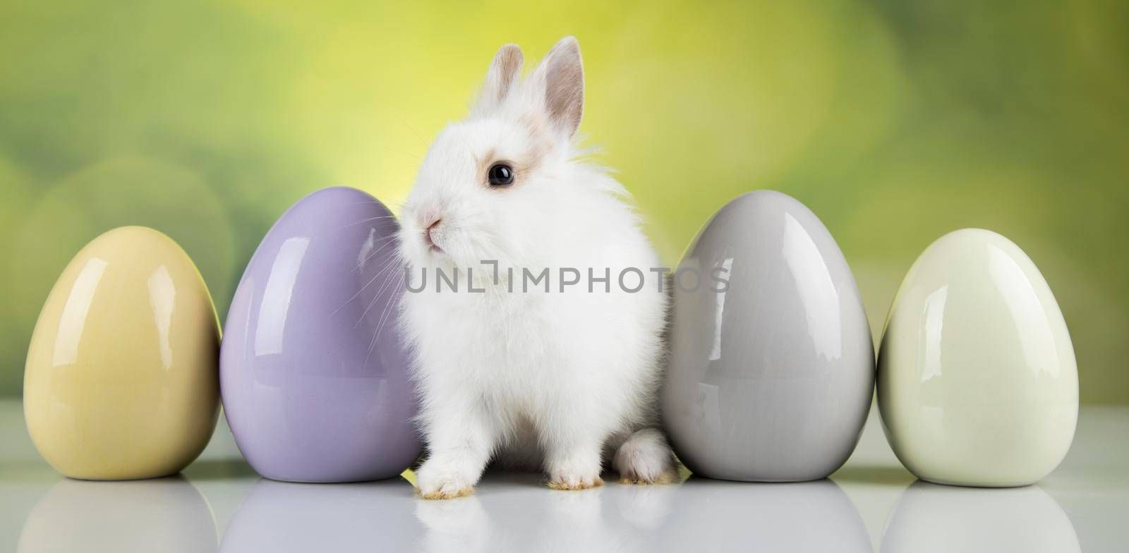 Baby bunny and egg, easter background