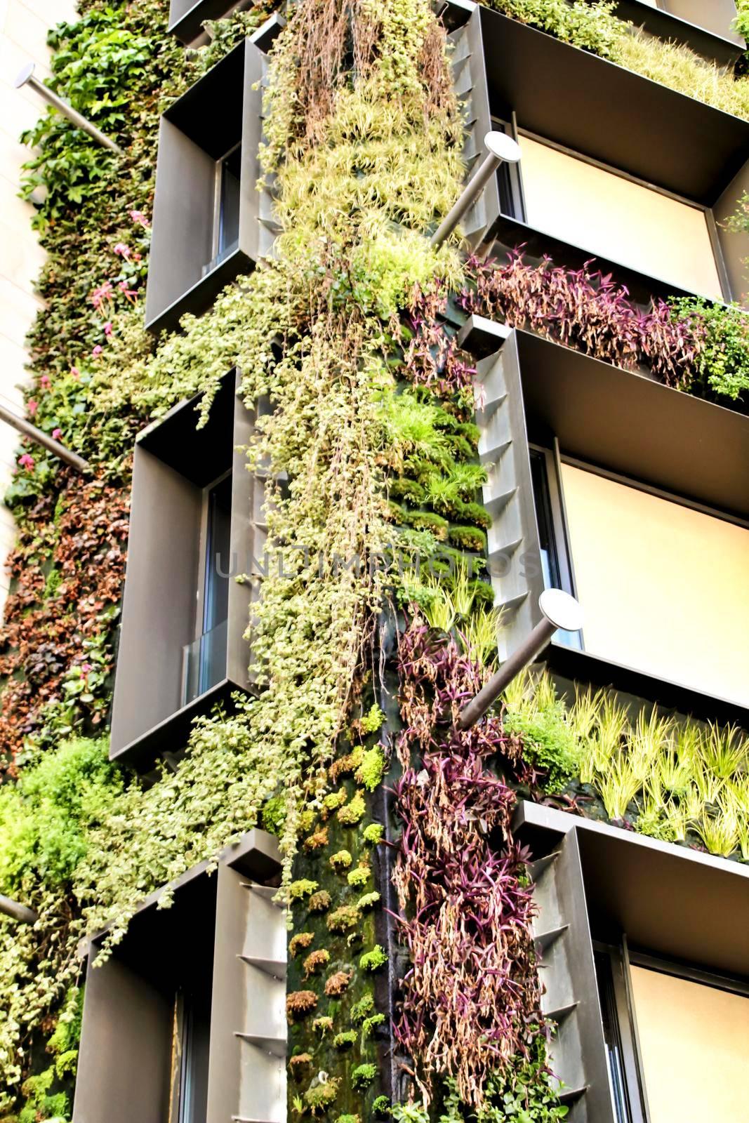 Beautiful modern facade with vertical garden in Madrid