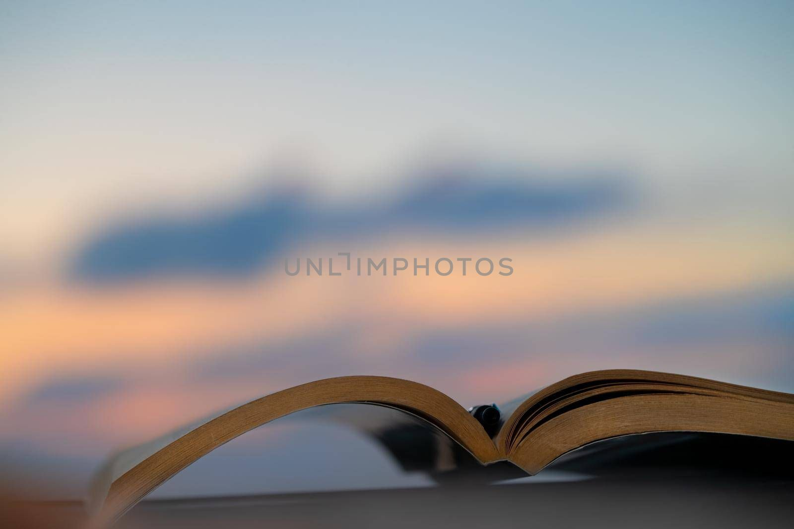 Spend a Nice Evening Reading an Interesting Book Outdoors in Mild Sunset Light. Keep a Pen to Mark the Most Important Things. Calm Pleasant Pastime.