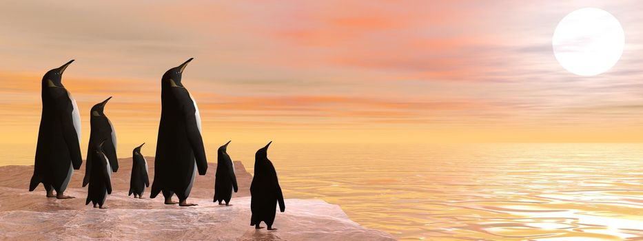 Penguin family sharing the beauty of sunset upon the ocean
