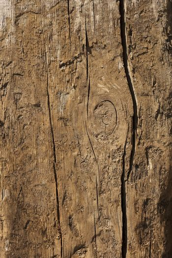 Old wood texture for background