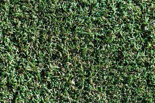 Artificial grass background texture