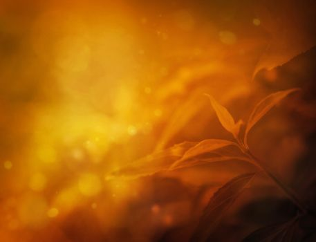 Autumn design floral background with leaves in season colors. Fall decoration concept.