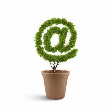 Image of pot plant shaped like at symbol