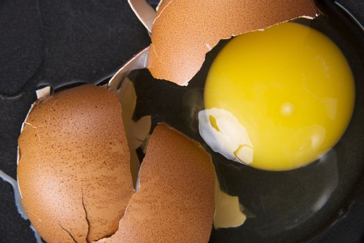 Broken egg, close up. Up front view.